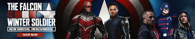 Falcon and the Winter Soldier Banner